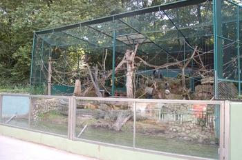 Zoo Saarbrücken 2012 072