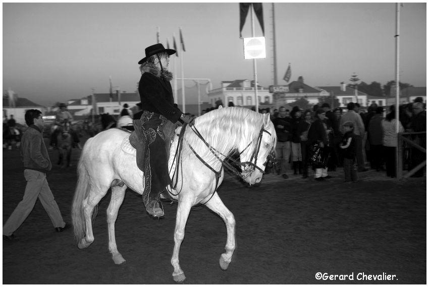 Feira nacional do cavalo - Golegã - Portugal #4