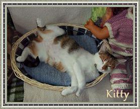 Ma Kitty