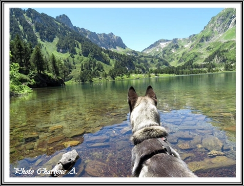 Photos de vacances (19 juillet 2016)