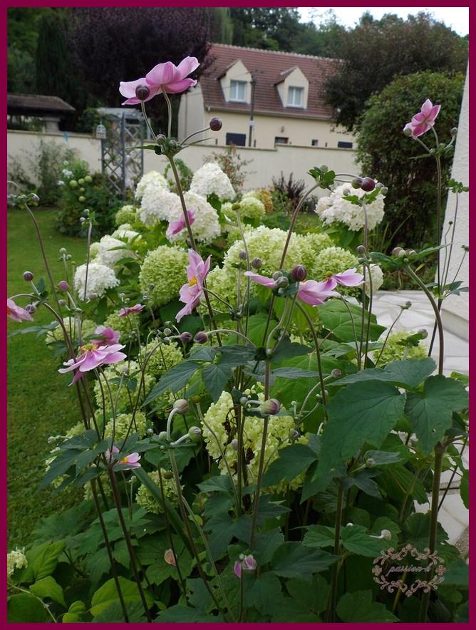 coté jardin 2