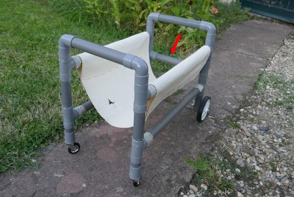 Chariot pour chat handicapé
