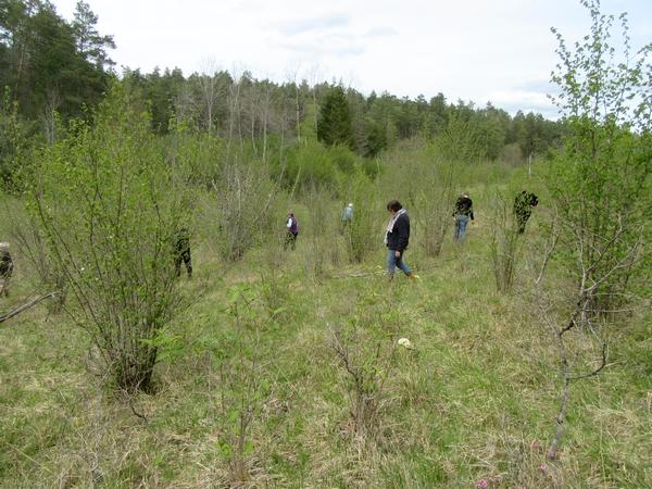 Une sortie botanique avec l'association mycologique du Châtillonnais...