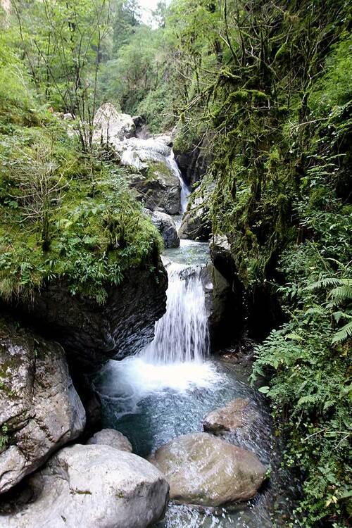L'Amazonie au Pays Basque