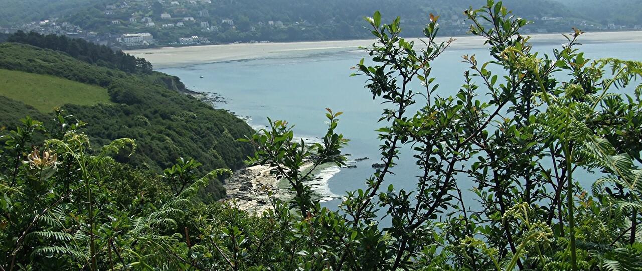 Trédrez-Locquémeau 1 / Les falaises ...
