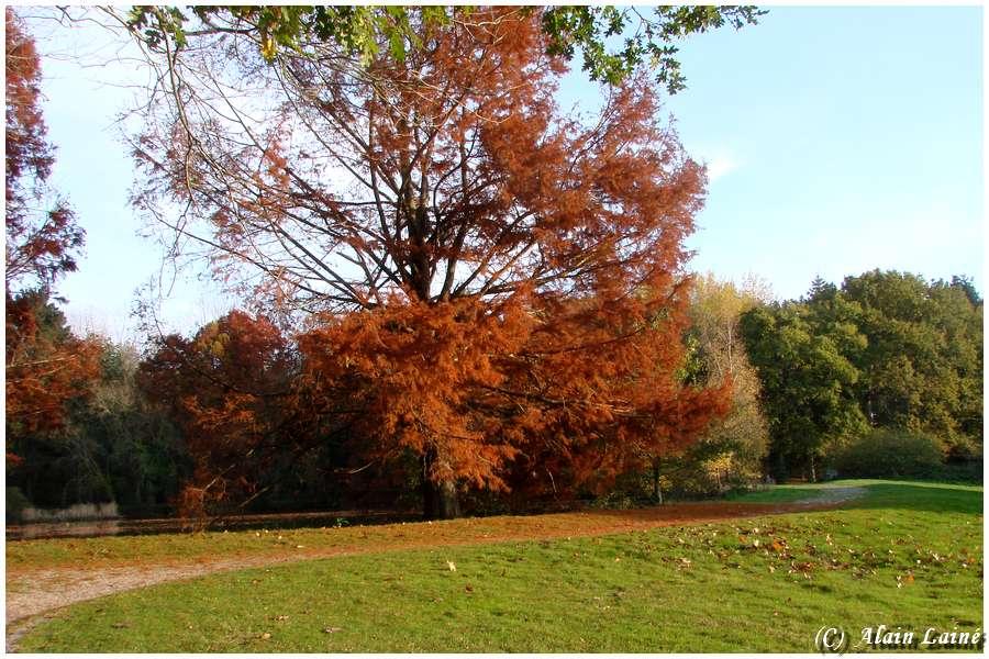 Parc des Gayeulles - Rennes