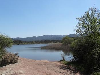 Lac des Escarcets, rive gauche