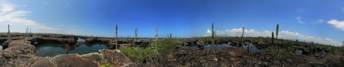 Galapagos: un rêve devenu réalité