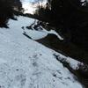Dans le bois des Arazures, à l'approche du couloir du ruisseau de Peyreget