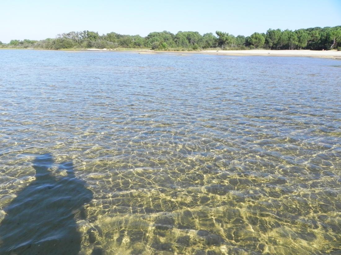 Ballade au lac de Biscarrosse  dept 40