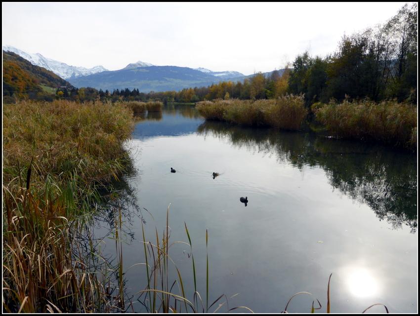 Souvenirs octobre 2015 : Les lacs des Ilettes à Sallanches ( Hte Savoie )