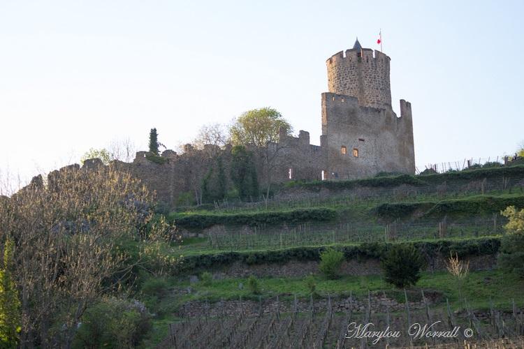 Kaysersberg 68 : 6/6 En descendant du château