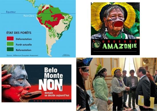 SAUVONS-L'AMAZONIE