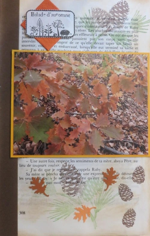 Scrap d'automne