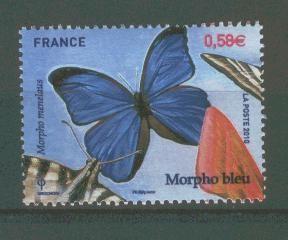 2010---papillons---0.58.jpg