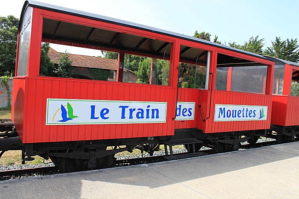 train des mouettes22