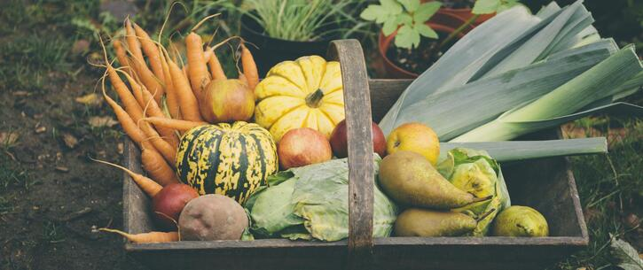 Alimentation 3:  Que mange-t-on en automne ?