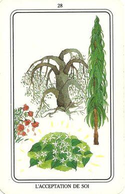 Tarot de Rajneesh-28-L'Acceptation de soi