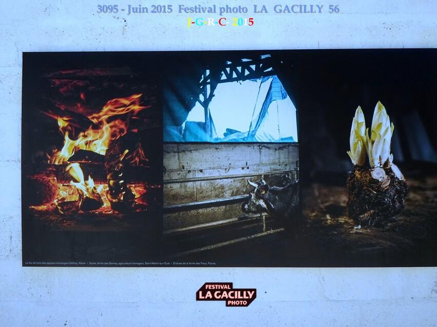 EXPO PHOTO  2015  N  7  PROD. ALIM. BRETAGNE  LA GACILLY 56  1/3  D  20/08/2015