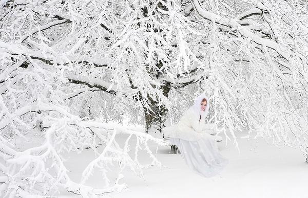 Sur un banc en hiver