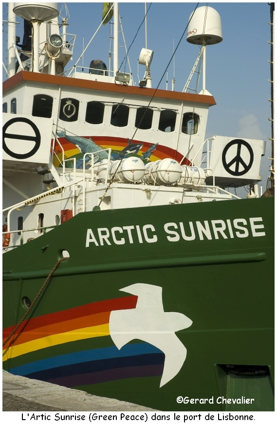 Artic Sunrise (Green Peace)