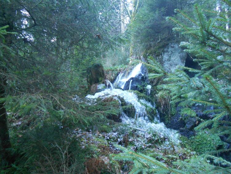 Vosges- Thurses du givre