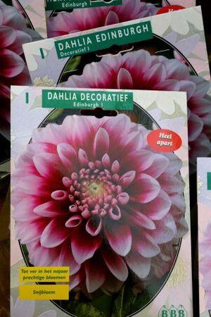 Famiflora - Promos de mars et nouveaux aménagements