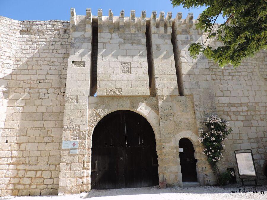 Villebois la Valette , le château (16)