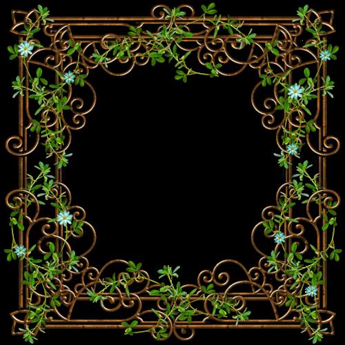 cadre de Phil23 - fleurs bleu