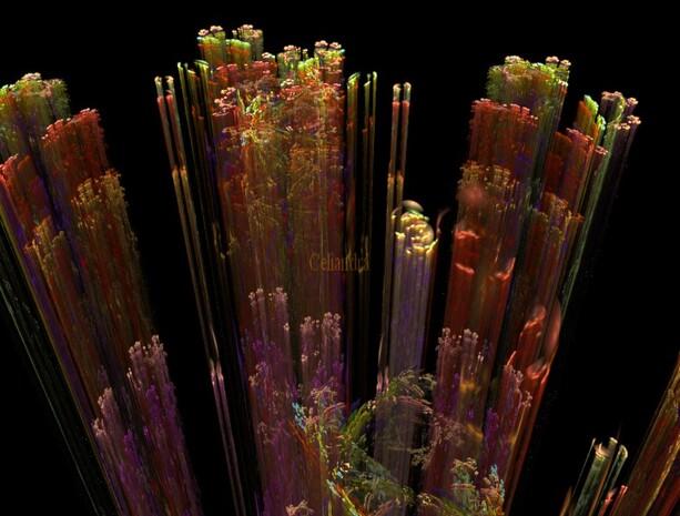 l'Imaginaire: Micro cosmos