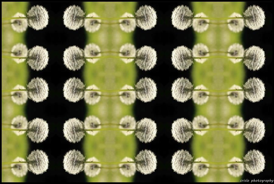 Kaleîdoscope fleuri