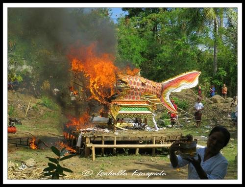01 Août 2014 - Une cérémonie, une crémation... c'est ça Bali !