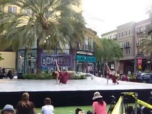 dance ballet dancers park sjdanceco