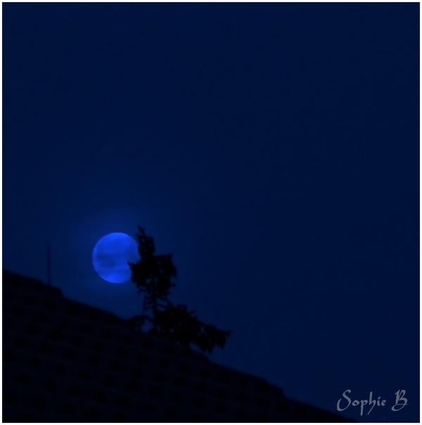 Nouvelle lune .
