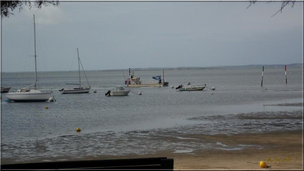 Toujours en balade au Bassin ...