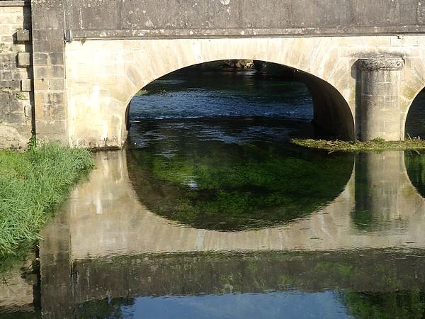 Une visite de la Seine à Vix, a été  proposée par le SICEC à la demande de Châtillon-Scènes