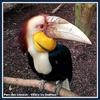 20140430-01-parc des oiseaux-02
