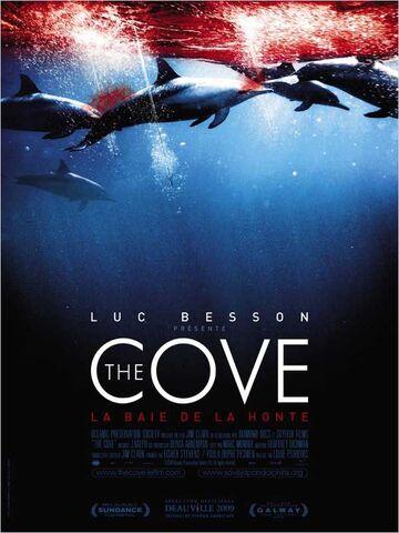 ~ The Cove ~