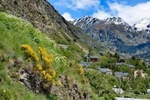 Porté Puymorens maison montagne - Maison de vacances à Porta dans les  Pyrénées Orientales (66)
