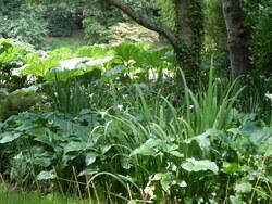 Jardin de Kerdalo