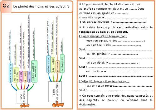 Leçon O2 Le pluriel des noms et des adjectifs DYS