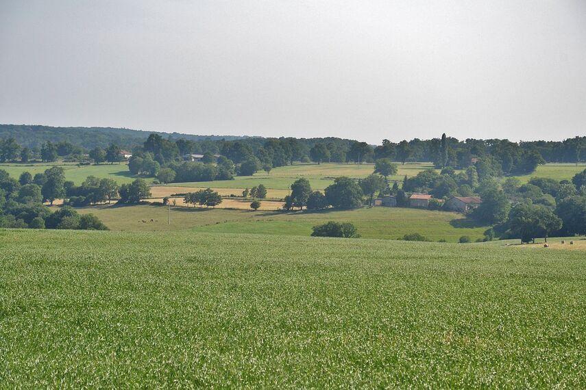 Paysage La Péruse.JPG