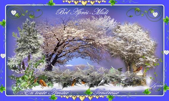 bel après-midi en toute amitié-tendresse hiver de Lynea - NOEL FETES -  lynea18 - Photos - Club Doctissimo