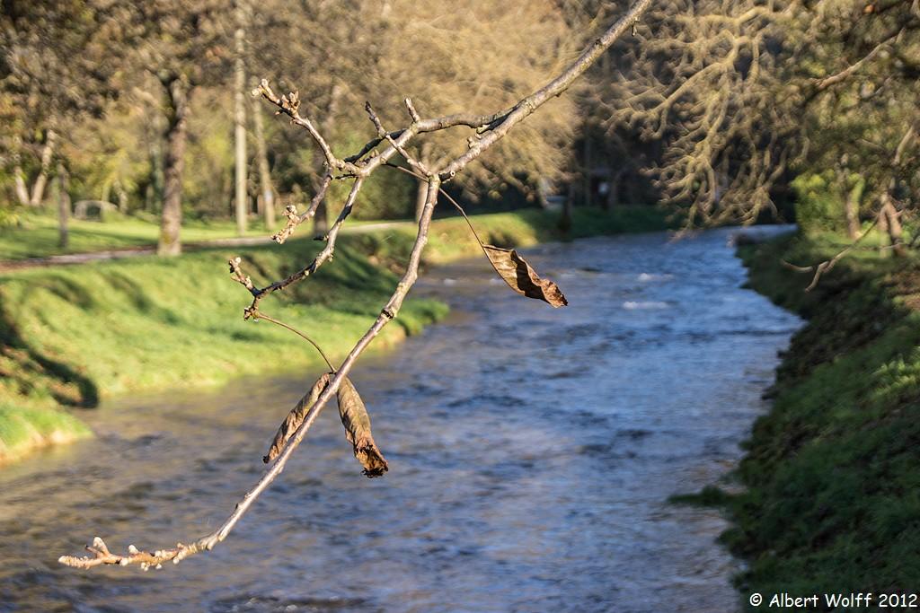 Le long de la rivière - 1