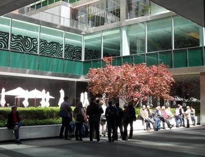 La vie sociale des petits espaces urbains (3) : la vie des Plazas