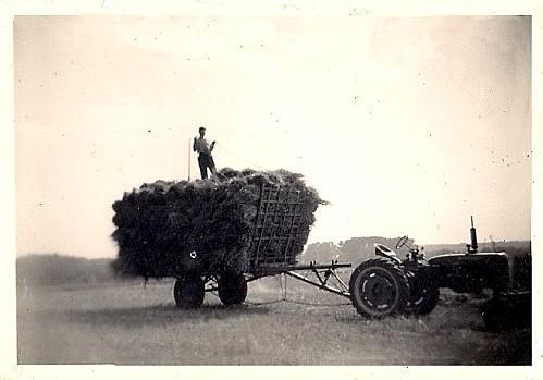Louze 1950