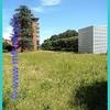 Image103.jpg