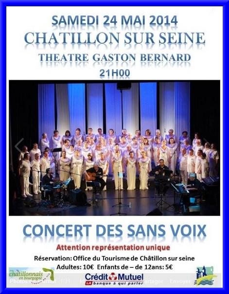 """""""Les Sans Voix"""" en concert unique au TGB le 24 mai 2014"""