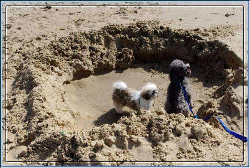 Une petite balade à la plage