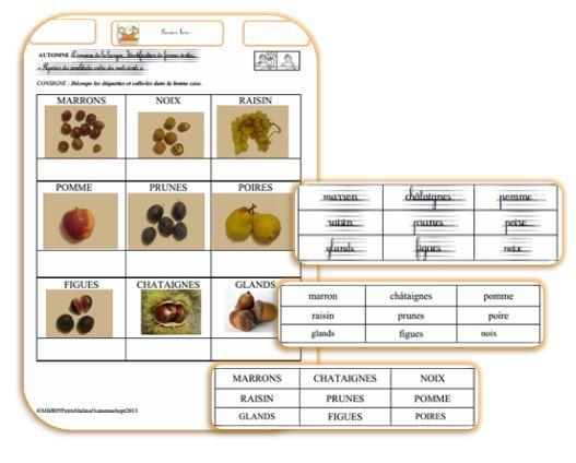 fruits  d'automne : exercices de lecture : loto